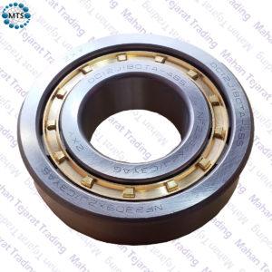 Bearings 485 Alborz - ZXY