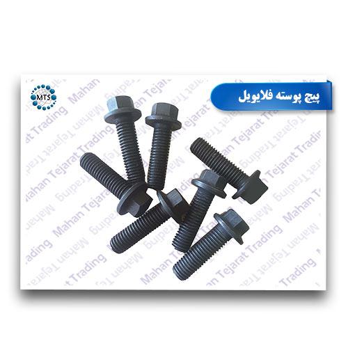 Flywheel shell screw