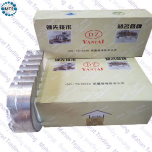 Fixed and movable bearings standard 375 t and Alborz DZ 4